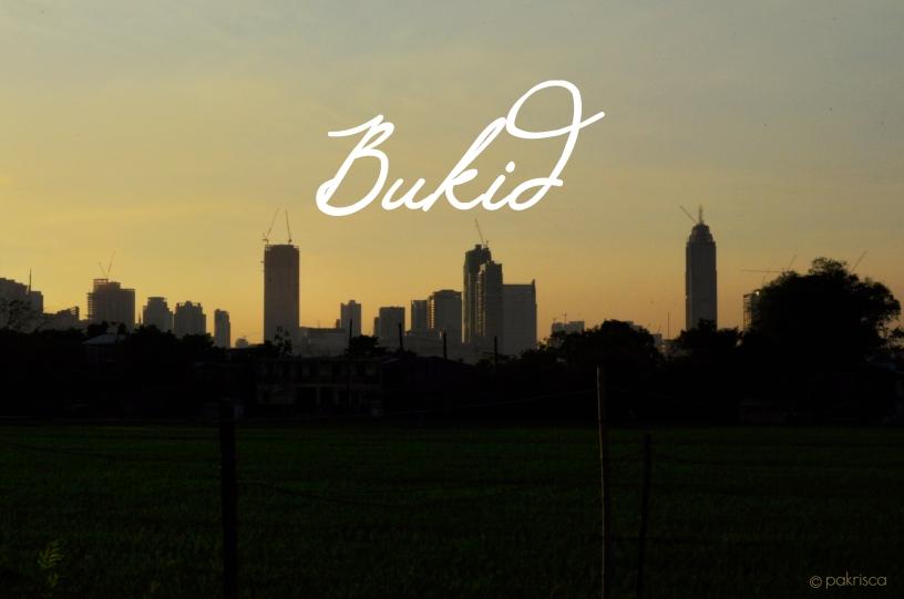 Bukid